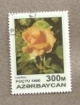 Stamps Asia - Azerbaijan -  Rosa