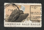 Stamps United States -  890 - Águila