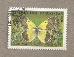 Sellos del Mundo : Asia : Uzbekistán : Mariposa Colias wiskotti