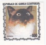 Sellos del Mundo : Europa : Guinea : gatos de raza