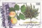 Sellos del Mundo : Africa : Túnez :  fruta