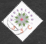 Stamps of the world : Netherlands :  820 - Rosa de Navidad