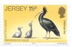 sello : Europa : Isla_de_Jersey : aves