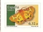 Stamps Spain -  Mariposa Hyphoraia Dejeani
