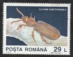 de Europa - Rumania -  4124 - Descubrimiento de fauna cavernícola en la gruta  Movile, Clivinia subterránea