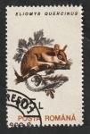 de Europa - Rumania -  4101 - Eliomys quercinus