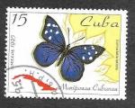 de America - Cuba -  3646 - Mariposa