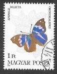 Sellos del Mundo : Europa : Hungría : 2851 - Mariposa