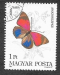 Sellos del Mundo : Europa : Hungría : 2852 - Mariposa