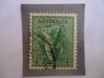 Stamps Oceania - Australia -  Koala (Phascolarctos) Serie: Koala,Kookaburra - Queen Elizabeth II