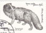 Stamps : Europe : Russia :  ZORRO