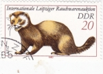 Stamps : Europe : Germany :  MARSUPIAL