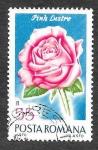 de Europa - Rumania -  2194 - Rosa Lustre