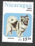 Stamps : America : Nicaragua :  1635 - Perro