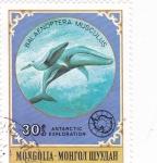Stamps Mongolia -  BALLENAS