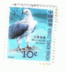 Sellos del Mundo : Asia : China : White Bellied  Sea Eagle
