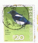 Sellos del Mundo : Asia : China : Common Magpie