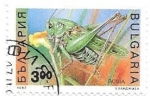 Stamps : Europe : Bulgaria :  insectos