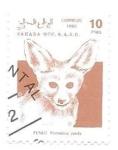 de Africa - Marruecos -  fauna