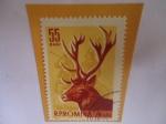 Sellos de Europa - Rumania -  Salvar al Sirvo (Cervus elaphus) - Serie: Animales del Bosque.