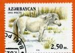 Stamps Asia - Azerbaijan -  Caballo Yakut