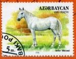 Stamps Asia - Azerbaijan -  Caballo