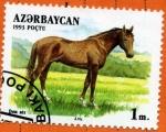 Stamps Asia - Azerbaijan -  Caballo Don