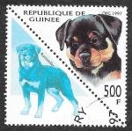 Sellos de Africa - Guinea -  1415 - Rottweiler