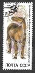 Sellos de Europa - Rusia -  5921 - Animales Prehistóricos
