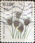 Stamps : Europe : Ireland :  Scott#1729 intercambio 2,25 usd, 78 cents. 2007
