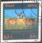 Stamps : Asia : Nepal :  Scott#466 , intercambio 0,20 usd. 60 p. 1988