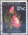 Stamps : Africa : South_Africa :  Scott#263 , nfb intercambio 0,20 usd. 12,5 d. 1961