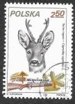 Sellos de Europa - Polonia -  2453 - Corzo