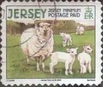 Stamps : Europe : Jersey :  Scott#1335b , intercambio 1,25 usd. Minimum. 2008