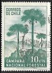 Stamps : America : Chile :  Araucaria