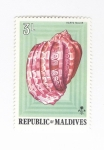 Stamps : Asia : Maldives :  Caracola. Harpa Major