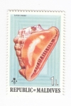 Stamps : Asia : Maldives :  Caracola. Cassis Nana