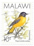 Sellos del Mundo : Africa : Malawi :  aves