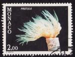 Stamps Monaco -  Prótula Tubularia