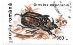 Sellos de Europa - Rumania -  insectos