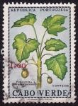 Stamps Cape Verde -  Jatrofa