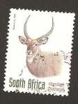 Sellos de Africa - Sudáfrica -  1033