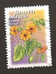 Sellos de Africa - Sudáfrica -  1319