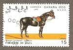 Sellos de Africa - Marruecos -  SC21