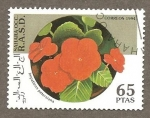 Stamps Morocco -  SC27