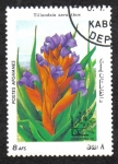 Stamps Afghanistan -  Exposición Internacional de Sellos ARGENTINA '85, Buenos Aires