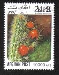 Sellos del Mundo : Asia : Afganistán :  Cactus