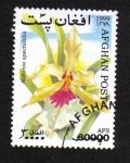 Sellos del Mundo : Asia : Afganistán :  Orquídeas