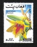 Sellos de Asia - Afganistán -  Orquídeas