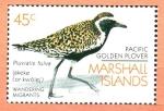Sellos de Oceania - Islas Marshall -  AVES.  PLUVIALIS  FULVA